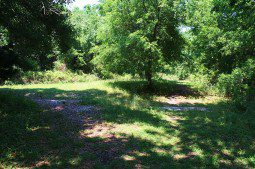 800px-Indian_Mound_Park_06May2010_06