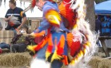mystic-eagle-powwow