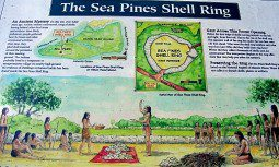 the-sea-pines-shell-ring