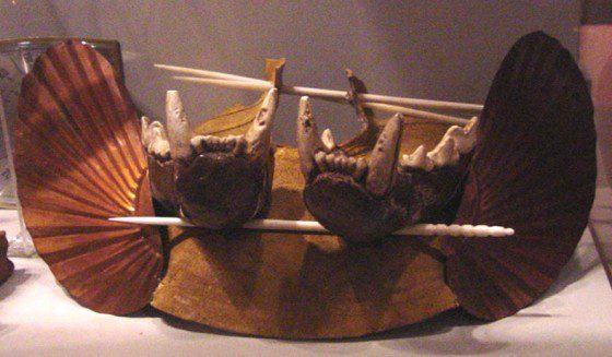 Panther Jaw Headdress found in Funeral Mound at Ocmulgee Mounds